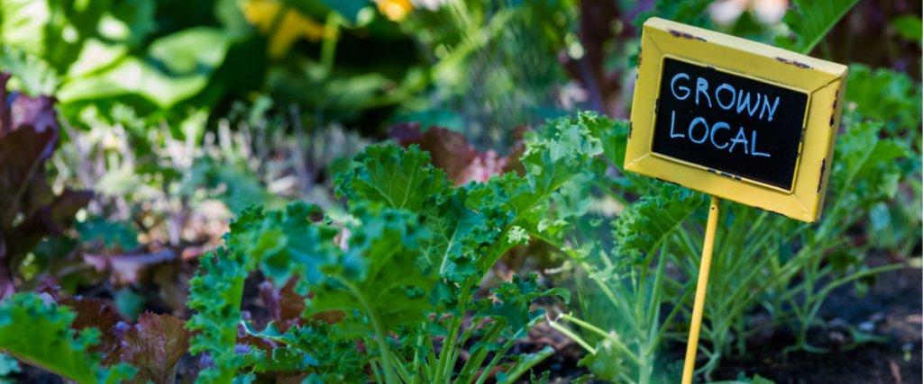 organic produce